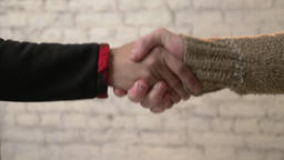 Handshake, African hand shakes the European hand. Unification of nations Footage