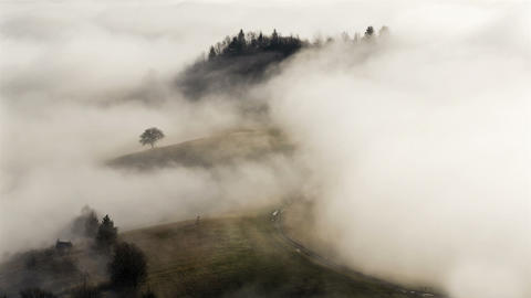 Mystic foggy morning in autumn with country road and tree time lapse Footage