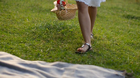 Young Girl Walking On The Grass With A Basket stock footage