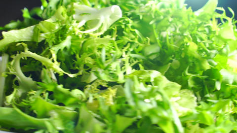 Heap of green frisse salad leaves on a rotating plate Footage