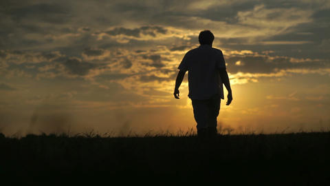 Man walking in the field with beautiful sunset on a background Footage