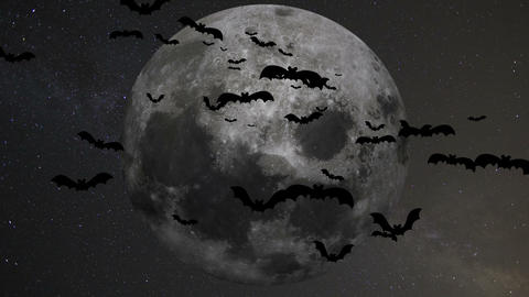 A flock of bats on the background of the moon GIF