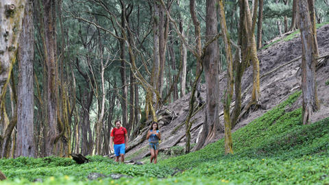 Hiker couple hiking in forest - people enjoying recreational activity Live Action