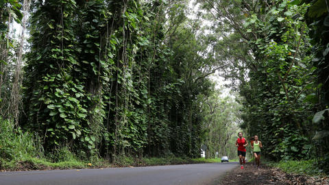 Running people exercising jogging on forest road Footage