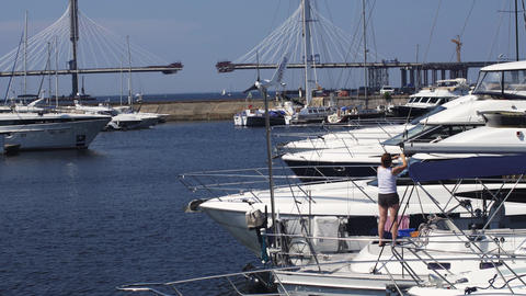 View of port with white yachts on summer sunny day. Blue water. Nature. Coast Footage