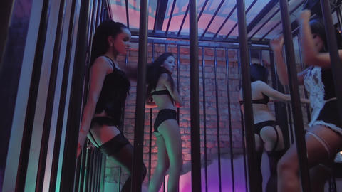 Sexy young girls captivating dances in black lingerie in night club cage Footage