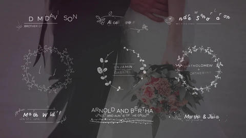 Wedding Titles Big Pack After Effects Template