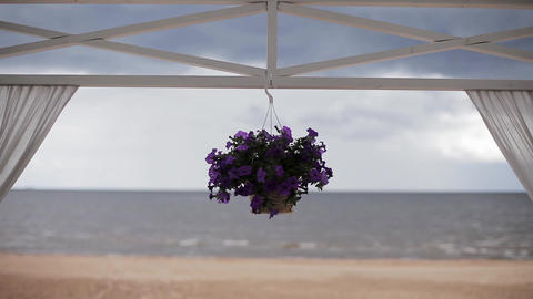 Flower pot with violets suspend on horizontal bar of entry. Coast on background Footage