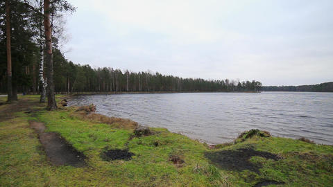 Beautiful landscape of green forest and lake. Panorama. Summer. Nobody Live Action