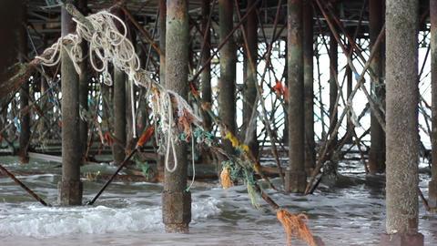 Flotsam and Jetsam Under the Pier Footage