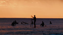 Silhouettes of Surfers Waiting For a Wave at Sunset Footage