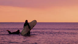 Surfers Paddling Out To Catch A Wave at Sunset Footage