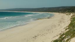Looking Along Hamelin Bay Beach in Australia's South West Footage