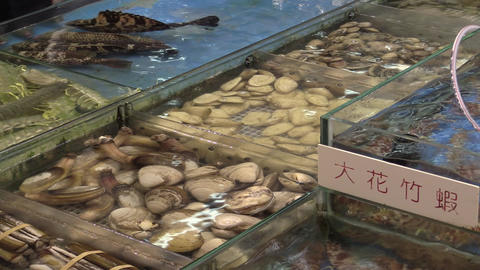 seafood market Footage