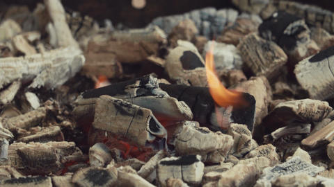 Burning charcoal with white ashes in fire place Footage