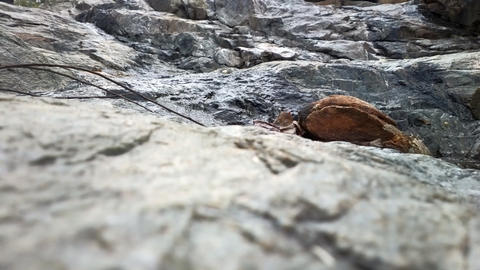 Small stream flows smoothly along surface of rock Footage