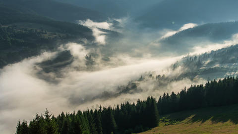 Mystic Foggy Morning above Mist Clouds over Trees Forest Countryside Time Lapse Footage
