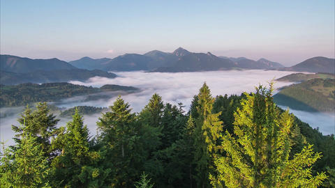 Sunrise Mist Morning over Forest and Foggy Mountain Valley Time Lapse. Trees and Footage