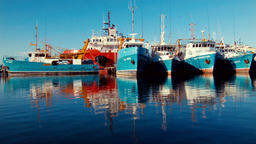 Boats Docked at Fremantle Fishing Boat Harbour on a Still Morning Footage