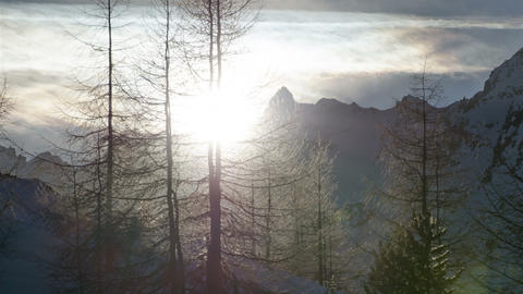 Winter Sunset over Forest Trees Silhouette in Snowy Alps Mountains Time Lapse. Footage