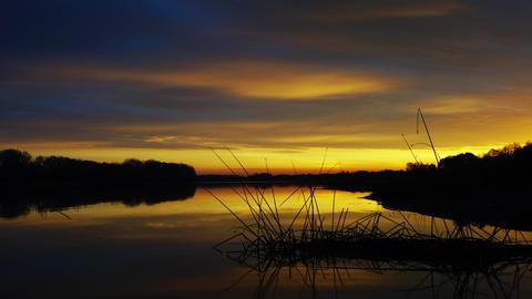 Morning river landscape at dawn, timelapse Footage