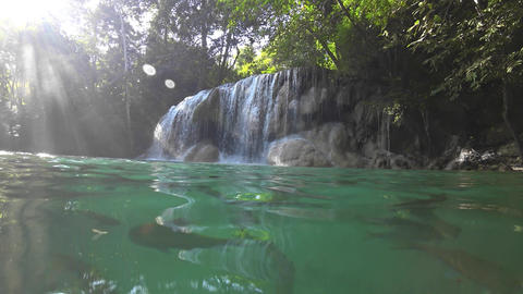 Erawan Waterfall with fish in water in Thailand 영상물