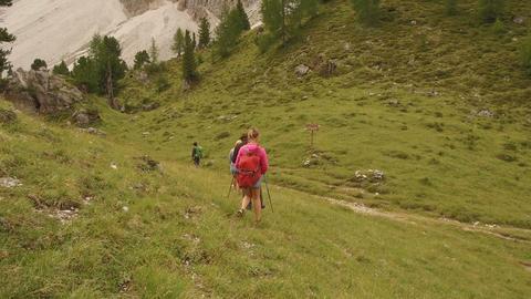 group of people doing trekking in Antersas, Dolomites Footage