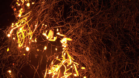 Macro Sheel Wool Burning ビデオ