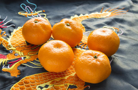 Chinese New year, mandarins in silk fabric with embroidered dragon フォト