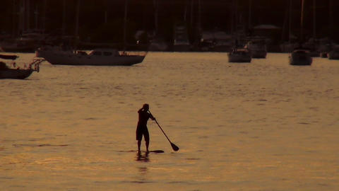 Man paddeling on a surfboard – MIAMI, FLORIDA/USA OCTOBER 23, 2013 Footage