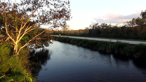 Long road through the Everglades florida. to Everglade City – EVERGLADE CITY,  Live Action
