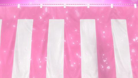 はためく桃白幕と桜吹雪(ループ可能) - パン CG動画