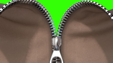 Unzipping a Zipper, Fabric Option Animation