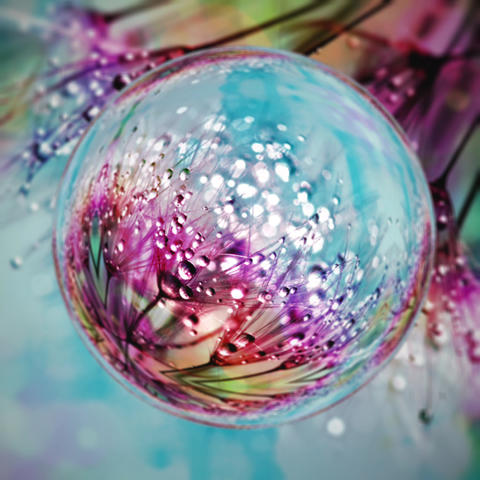 Colorful Flower Bubble 画像