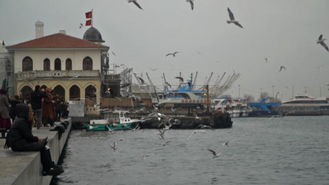 The docks are flying seagulls . Super slow motion 画像
