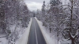 Paved road among snowy trees Footage