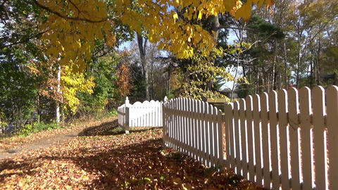 Autumn landscape with falling leaves, picket fences and a red leafy carpet Footage