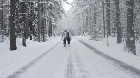 Two Happy Women Walking In Winter Forest Footage