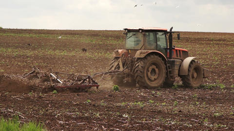 Tractor working on the field Footage