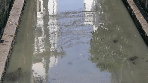 Close up from a dirty river Footage