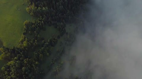 Aerial view of beautiful foggy forest with golden morning colors Footage