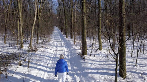 View from height to woman in warm clothes strolls along a path among the Footage