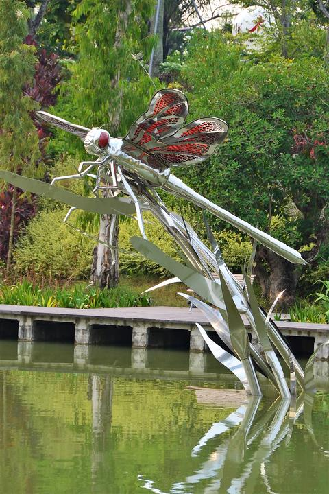 shot of exotic flowers, plants, trees, sculptures inside Singapore Garden by the Fotografía
