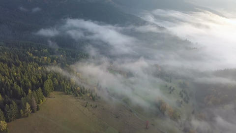 Aerial view of foggy morning in autumn country at sunrise. Drone flight Live Action