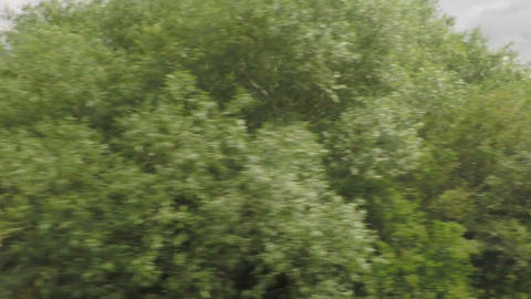 View of passing cloudy rural landscape with green fields and trees from a train Footage