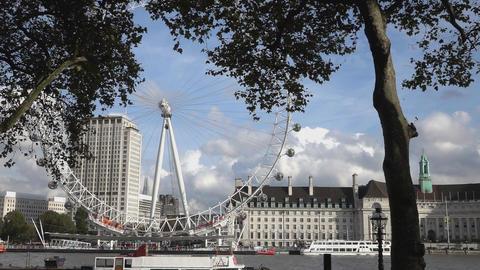 London Eye and County Hall - LONDON, ENGLAND Live Action