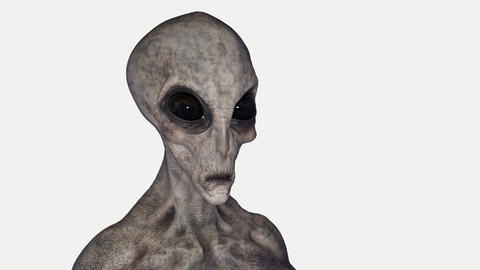 the alien looks around, animation, Alpha channel Footage