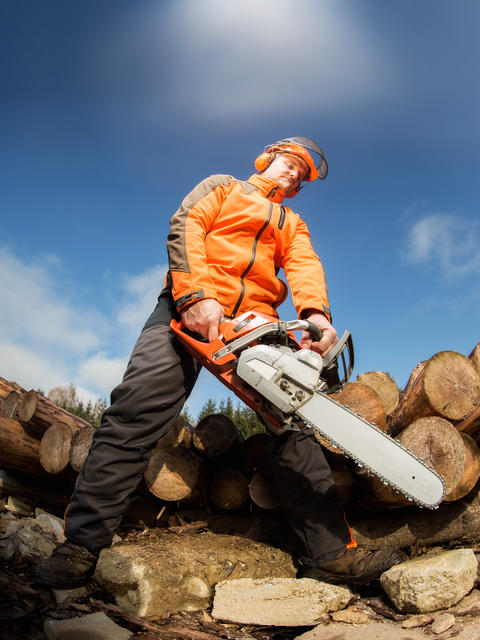 Man with chainsaw Photo