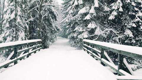 POV shot, walk along beautiful winter forest road and the bridge in falling snow Footage