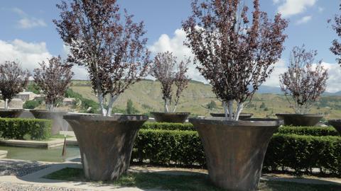 Flowerbed in Rabati Castle - Georgia Footage